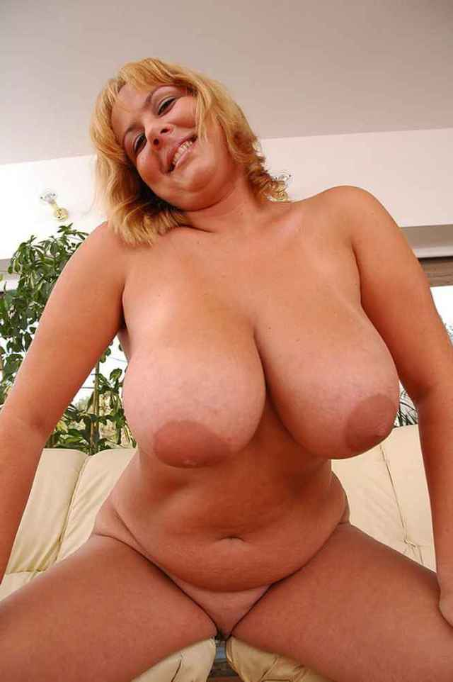 Pornhub Big Tits Big Ass