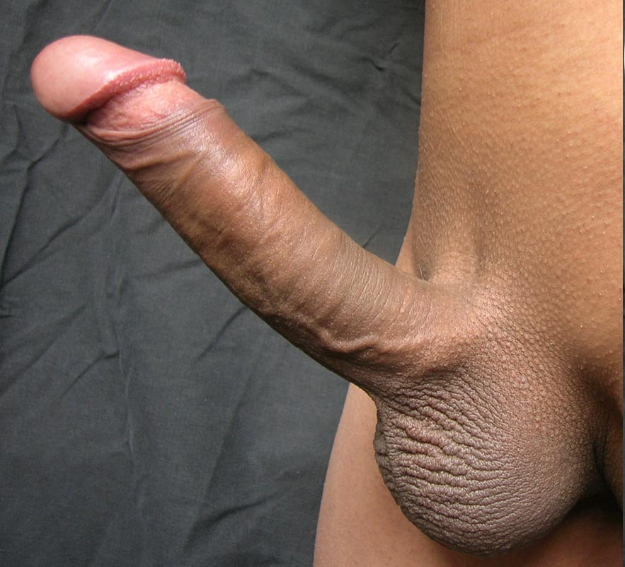 erect close Big up cock