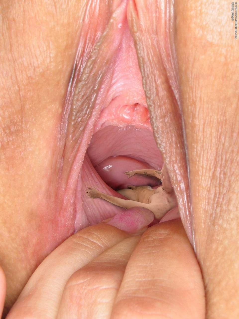 Close up pussy insertions