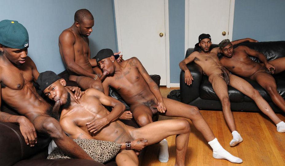 gay male escorts in orlando