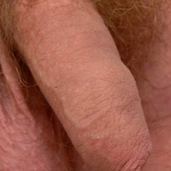 gay male blow job quickies