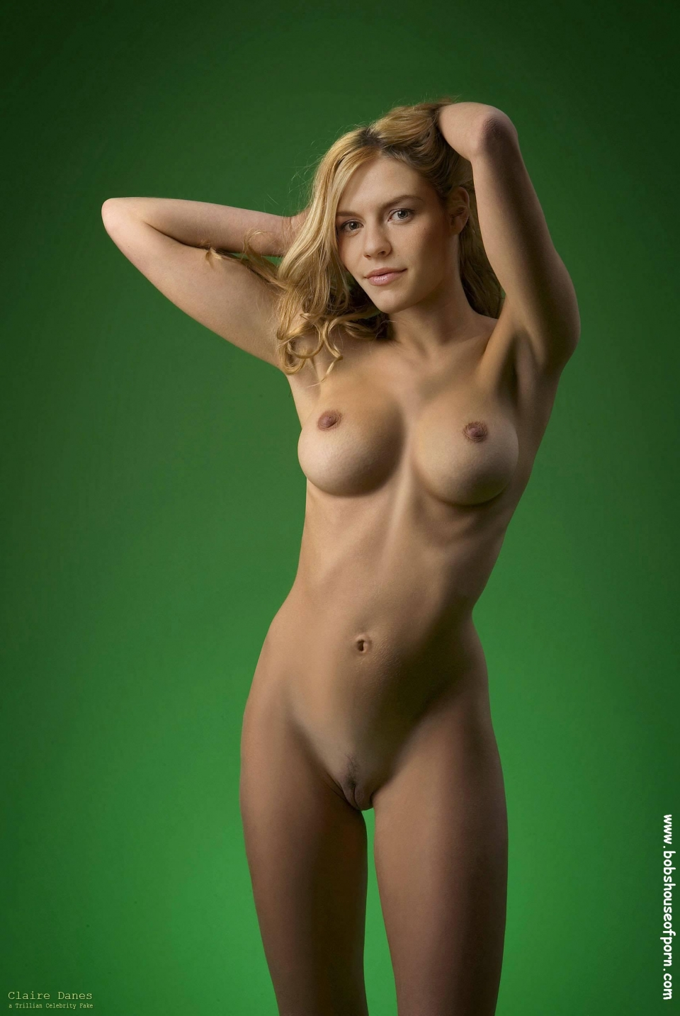 sexibl.com Claire danes nude naked fakes 300X448 size