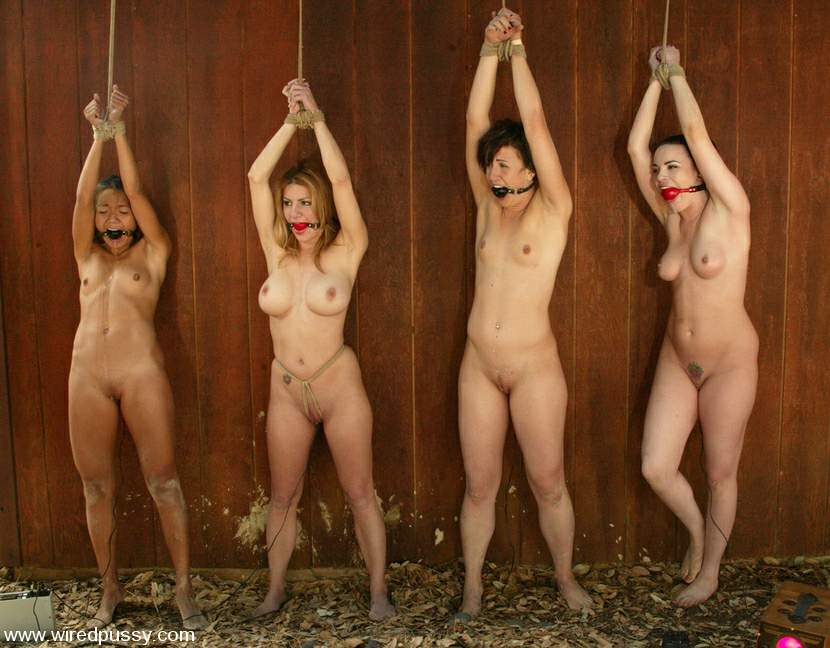 Valuable piece Nude sex slave auction talk this
